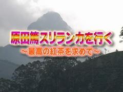 原田篤 スリランカを行く! #3