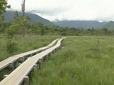 日本百景 美しき日本 神秘の湿原と美しき山岳