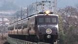 JR東日本鉄道ファイル